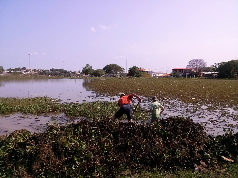 Limpeza acontece também na água / Foto: Divulgação / OA